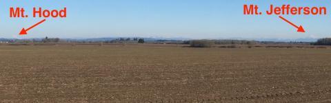 Mt Hood and Mt Jefferson