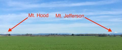 Hood and Jefferson